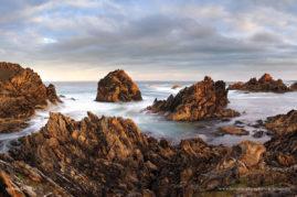 Tarkine Coast, Tasmania Australia