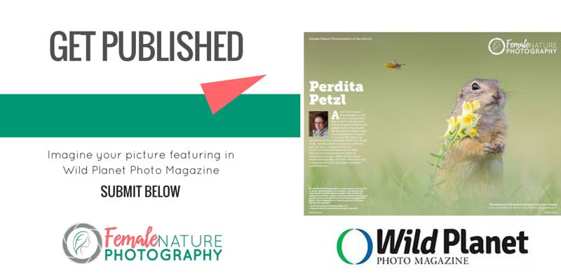 MAGAZINE SUBMISSIONS – Female Nature Photography