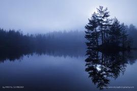 Afternoon mist, Lake de la Colombière, Auvergne, France