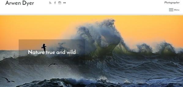 Arwen website