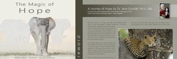 The Magic of Hope book