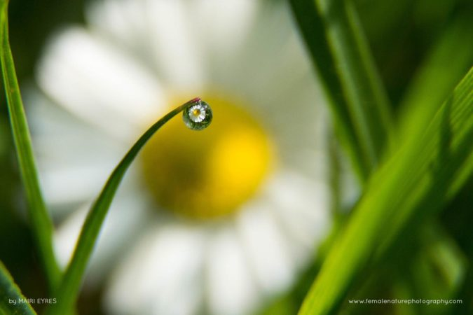 Through a water droplet