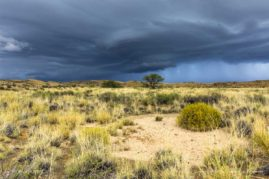 Landscape in South Africa