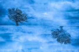 La trahison des nuages