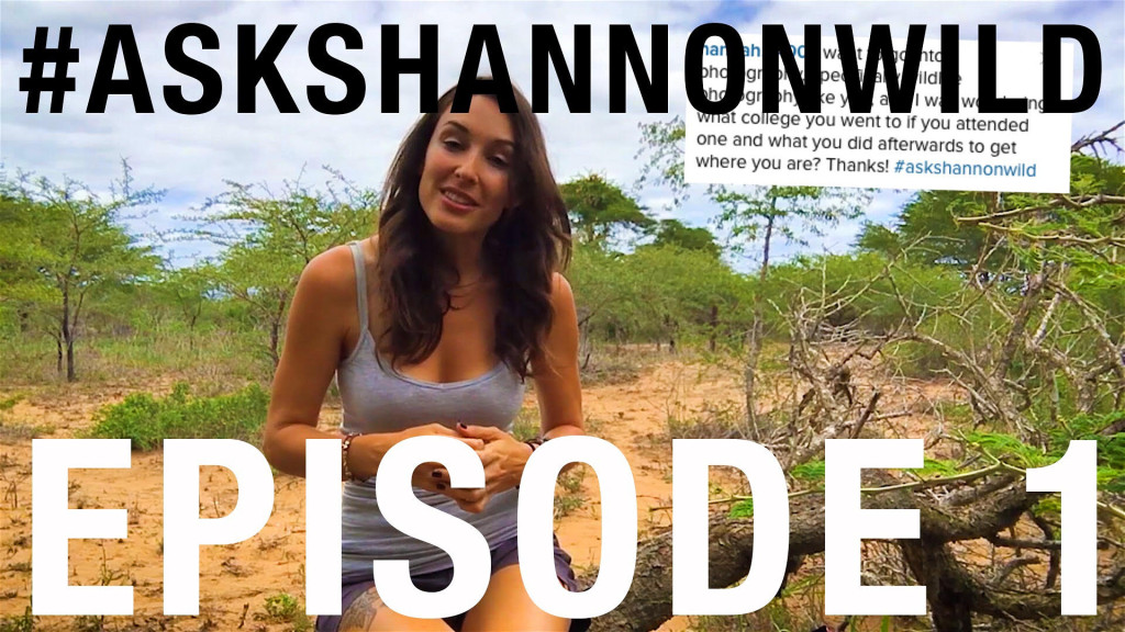 Ask shannon