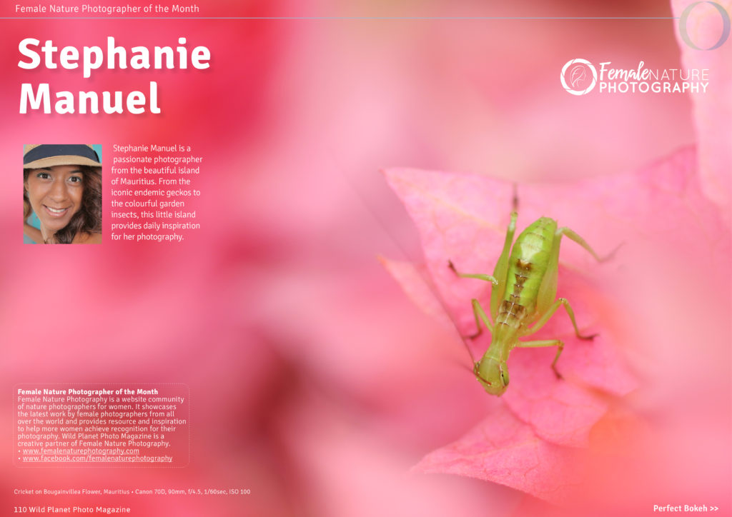 Female nature photographer of the month January 2017 Stephanie Manuel