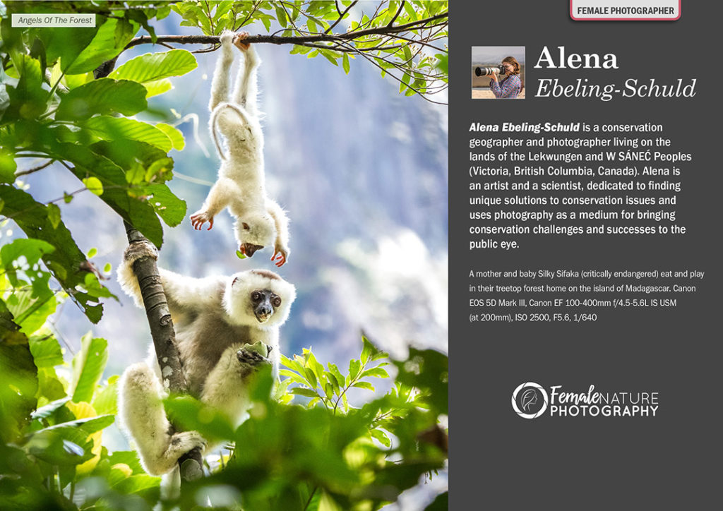 Female Nature Photographer of the Month - March 2018 - Alena Ebeling-Schuld
