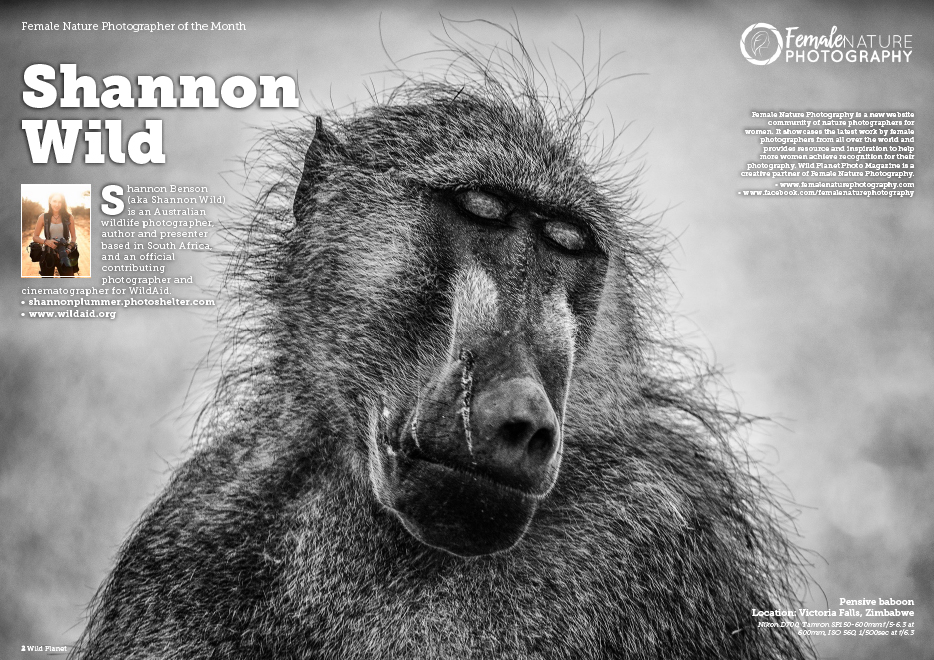 Female Nature Photographer of the Month - Shannon Wild
