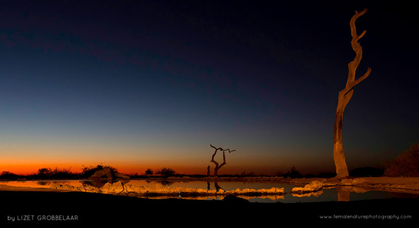 Sunset over African skies - The sun setting over a waterhole - The Bush House in Madikwe Game Reserve