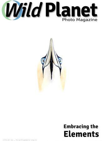 WPM-Sept-cover