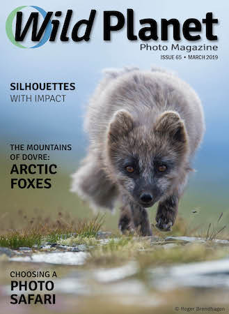 Wild Planet Photo Magazine March-Cover-Web