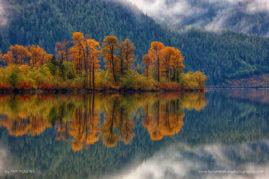 Falls Reflections