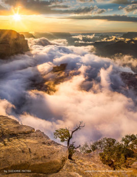 Rising Mists - A summer storm over the grand canyon fills the canyon with clouds as the sun sets - Its like being on top of the world