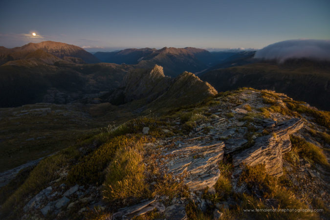 Mount Gibbs, Kahurangi National Park, New Zealand