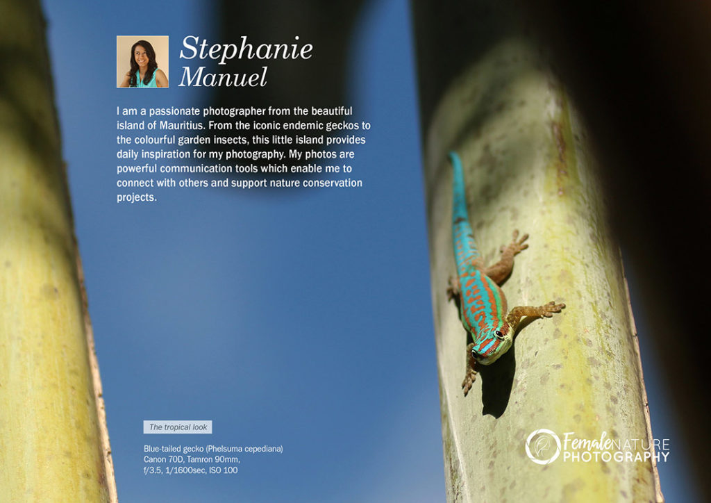 Female Nature Photographer of the Month - August 2018 - Stephanie Manuel