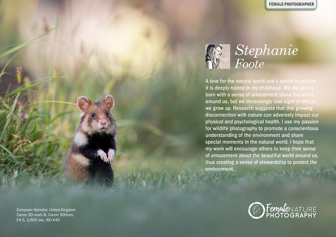 Female Nature Photographer of the Month - June 2018 - Stephanie Foote