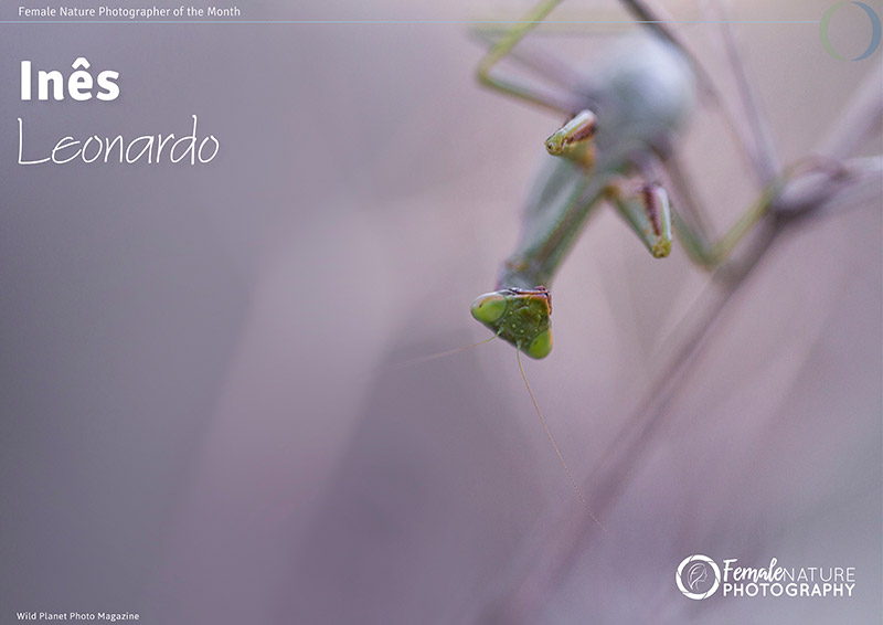 Female Nature Photographer of the Month - Jan 2018 - Ines Leonardo